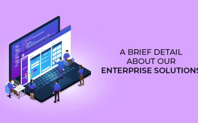 A brief detail about our Enterprise Solutions